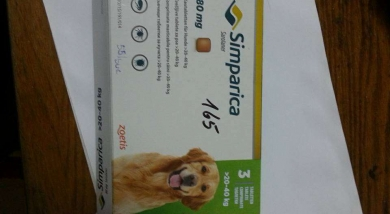 Rescue Dogs Romania - Donation Results